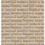 Камень фасадный Доломит 1-20-00