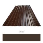Профнастил С20 0,45*1150*2000 мм RAL 8017 шоколадно-коричневый