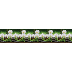 Панель  Фартук Белая Орхидея 3000х600х1.3мм