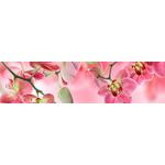 Панель  Фартук Орхидея №3 розовая 2030х695х3мм