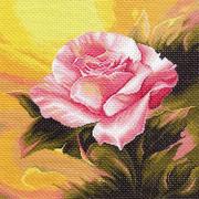 Рисунок на канве МП (41*41 см) 1111 «Розовая прелюдия»