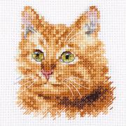 Набор для вышивания Алиса 0-207 «Животные в портретах. Рыжий кот» 8*8 см