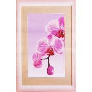 Ткань для вышивания бисером ЧМ СБ-295 Розовая Орхидея 17*30 см