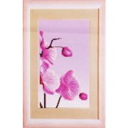 Ткань для вышивания бисером ЧМ СБ-297 Розовая Орхидея 17*30 см