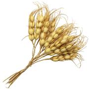 Декор букетик «Пшеница» 15 см натуральный