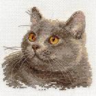 Набор для вышивания Алиса 0-134 «Британский кот» 12*11 см