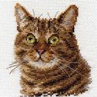 Набор для вышивания Алиса 0-135 «Европейский кот» 11*12 см