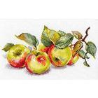 Набор для вышивания Алиса 5-09 «Яблоки» 27*15 см