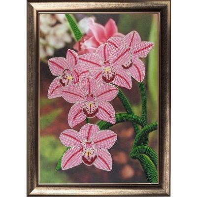 Набор для вышивания бисером Butterfly №208 «Орхидеи» 25*36 см в интернет-магазине Швейпрофи.рф