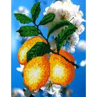 Набор для вышивания бисером Наследие НДА4-049 «Лимоны 2» 24*32 см