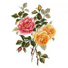 Набор для вышивания М.П.Студия НВ-540 «Улыбка лета» 25*35 см