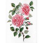 Набор для вышивания М.П.Студия НВ-541 «Садовые розы» 25*35 см