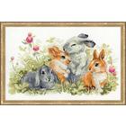Набор для вышивания Риолис №1416 «Забавные крольчата» 40*25 см