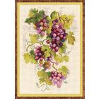 Набор для вышивания Риолис №1455 «Виноградная лоза» 21*30 см
