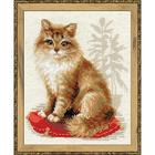 Набор для вышивания Риолис №1525 «Кошка домашняя» 24*30 см