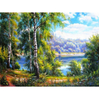 Набор для раскрашивания Paintboy GX22915 «Береза у воды»