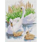 Рисунок для вышивания бисером Каролинка КБЖ-3023 «Лебединое семейство» 27*35 см