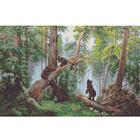Рисунок для вышивания бисером Каролинка КБП-2004 «Шишкин. Утро в сосновом бору» 32,5*54 см