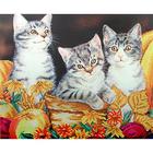 Рисунок на габардине А3 БИС 593 «Три котенка»