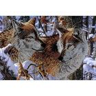 Рисунок на габардине А3 КМЧ-3328 «Волки»