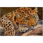 Рисунок на габардине А3 КМЧ-3424 «Дикая кошка»