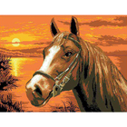 Рисунок на канве Гелиос Ф-008 «Мустанг» 41*54 см