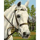 Рисунок на канве Гелиос Ф-035 «Белый конь» 35*44 см