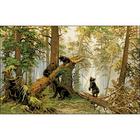 Рисунок на канве Гелиос Ф-049 «Мишки в сосновом бору» (Шишкин) 43*63 см
