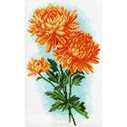 Рисунок на канве МП (28*37 см) 1586 «Желтые хризантемы»