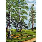 Рисунок на канве МП (37*49 см) 0590 «На лесной опушке»