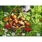 Рисунок на канве МП (37*49 см) 1822 «Первые грибы»