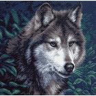 Рисунок на канве МП (41*41 см) 0970 «Волк»