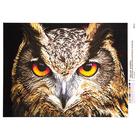 Рисунок на полотне А3 E-0335 «Мудрый взгляд» 29*39 см