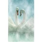 Алмазная мозаика Milato № 170 «Лебединая верность»