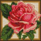 Алмазная мозаика АЖ-1450 «Румяная роза»