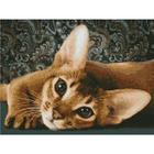 Алмазная мозаика АЖ-1458 «Абиссинская кошка»
