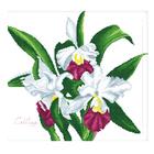 Алмазная мозаика Кристалл на дер.осн. DZ002 «Белые цветы»