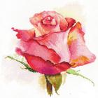 Набор для вышивания Алиса 2-39 «Дыхание розы. Очарование.» 24*24 см