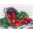 Набор для вышивания М.П.Студия НВ-531 «Сочный урожай» 21*27 см