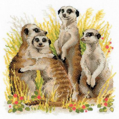 Набор для вышивания Риолис №1761 «Сурикаты» 25*25 см в интернет-магазине Швейпрофи.рф