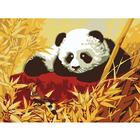 Набор для раскрашивания Molly G-S005 «Панда»