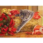 Набор для раскрашивания Molly KH0050  «Подарок» 15*20 см