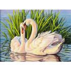 Набор для раскрашивания Paintboy GX8466 «Лебеди»