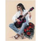 Набор для вышивания Риолис №1766 «Гитарист» 30*40 см