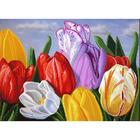 Рисунок на полотне А3 E-3034 «Голландские тюльпаны» 29*39 см