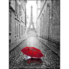 Рисунок на полотне А3 E-3057 «Париж» 29*39 см