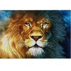 Алмазная мозаика DIY R-724  «Лев»