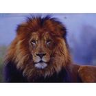 Алмазная мозаика Milato № 211 «Царь зверей»