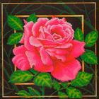 Набор для вышивания Искусница №565 «Цветок. Страсть» 22*22 см