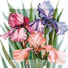 Набор для вышивания Овен №341 «Цветущие ирисы» 36*40 см